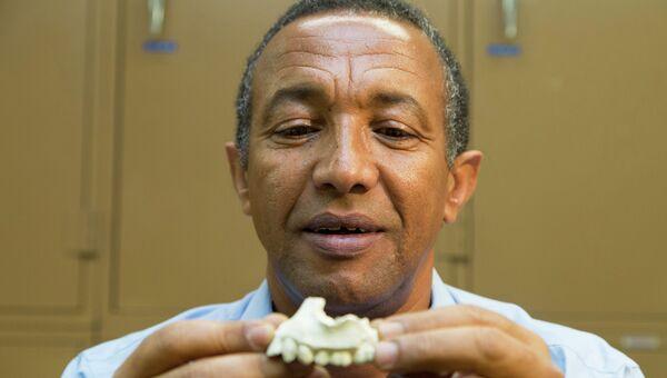 Фрагмент нижней челюсти Australopithecus deyiremeda