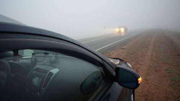 Утренний туман на дороге