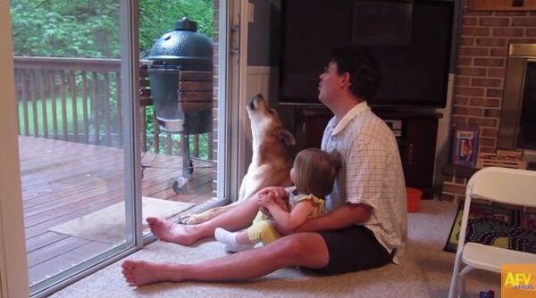 Семейный хор: девочка учит собаку правильно выть