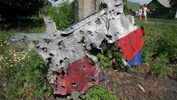 Обломки Боинга в Донецкой области