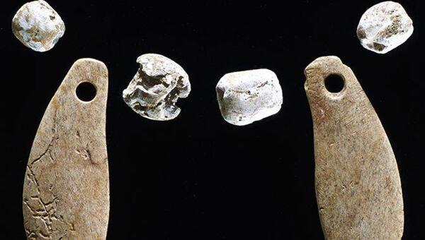 Останки ошейника, найденные в могиле рысёнка в кургане древних индейцев