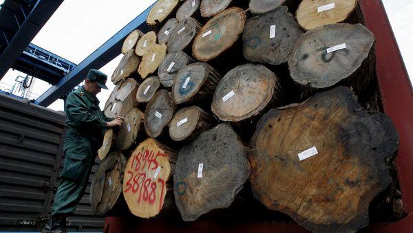 Переработка древесины. Архивное фото
