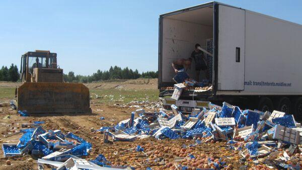 Уничтожение санкционной продукции в России. Архивное фото
