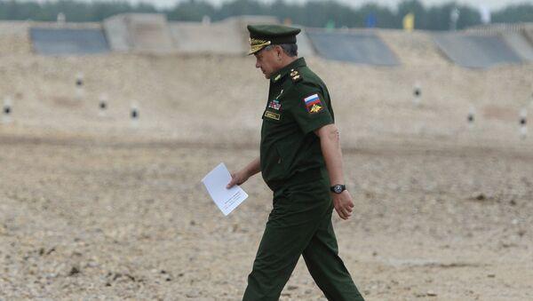 Министр обороны Российской Федерации генерал армии Сергей Шойгу. Архивное фото
