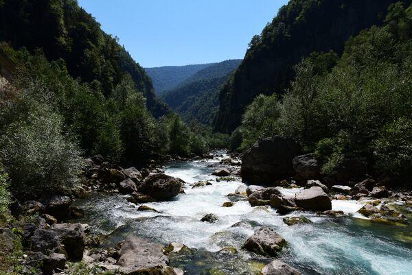 Рицинский заповедник в Абхазии. Река Бзыбь. Архивное фото