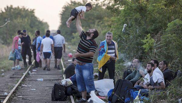 Мигранты на пути из Сербии в Венгрию