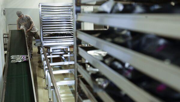 Производство лекарств. Архивное фото