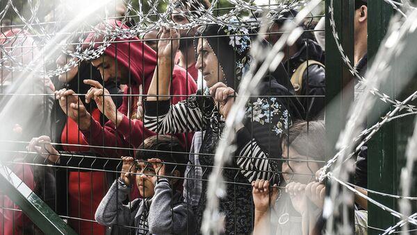 Мигранты за ограждением на границе Венгрии и Сербии. Сентябрь 2015