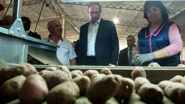 Президент России Владимир Путин во время осмотра хранилища крестьянского хозяйства Юзефов Н.Н.