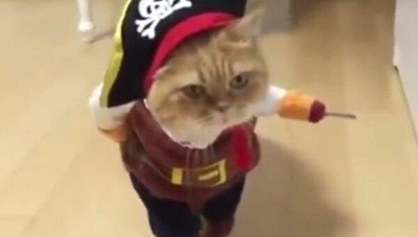 Лучший костюм к Хэллоуину