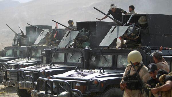 Бойцы местных сил самообороны и военные силы армии Ирака неподалеку от Байджи. Архивное фото