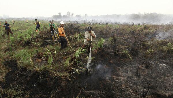 Тушение лесных пожаров в Индонезии. 22 октября 2015. Архивное фото
