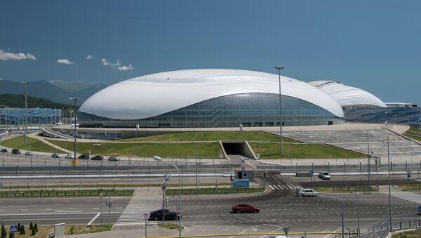 Ледовый дворец Большой в Олимпийском парке в Сочи. Архивное фото