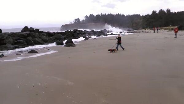 Убегая от волны