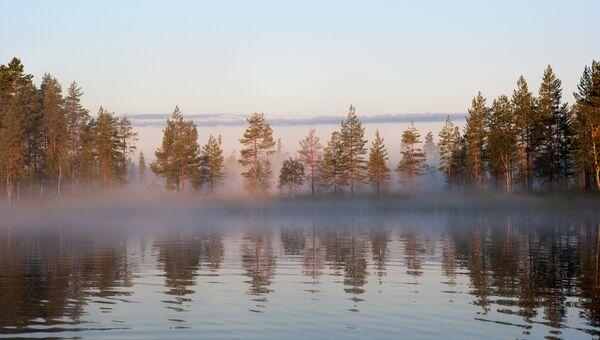 Туманное утро на лесном озере в Республике Карелия. Архивное фото