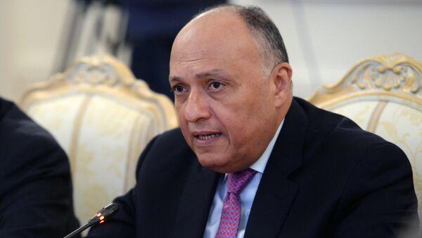 Министр иностранных дел Египта Самех Шукри, архивное фото