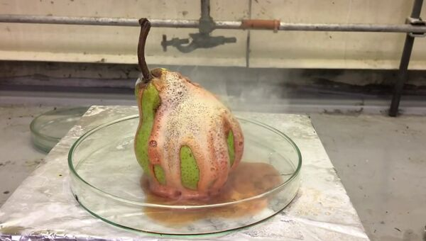 Суперкислота уничтожает грушу