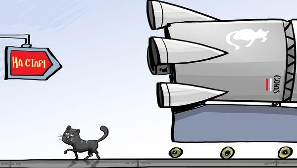 Эвакуация кота