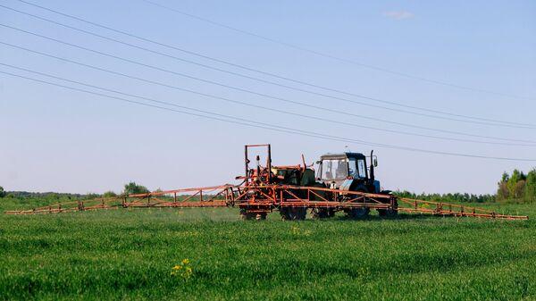 Трактор во время удобрения озимых зерновых культур в колхозе Тейковского района Ивановской области