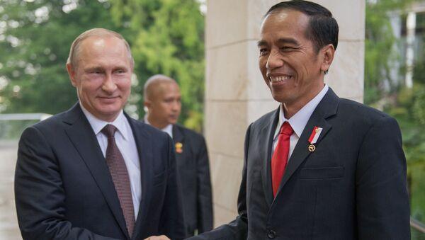 Беседа президента РФ В. Путина с президентом Индонезии Джоко Видодо в узком составе