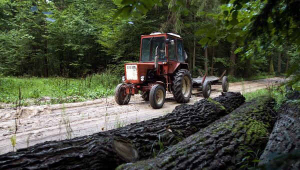 Трактор в Беловежской пуще, Польша. Архивное фото