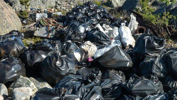 Уборка мусора. Архивное фото