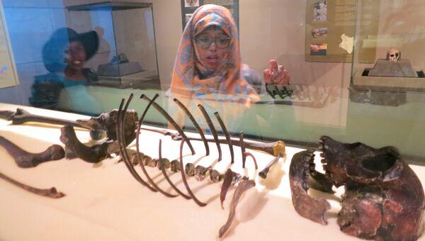 Скелет турканского мальчика, одного из первых прямоходящих людей