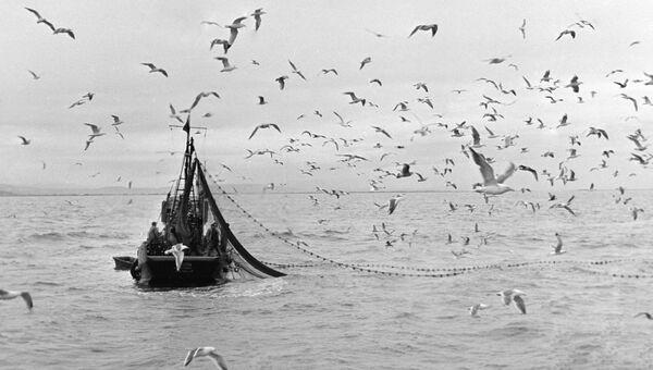 Рыбацкий сейнер. Архивное фото