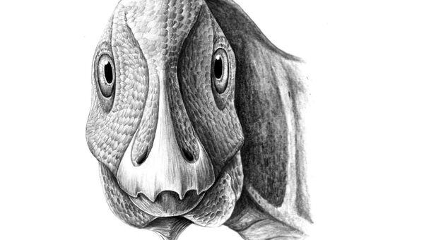 Лицо гадрозавра, обезображенное опухолью