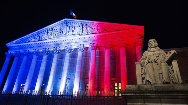 Национальная ассамблея Франции. Архивное фото