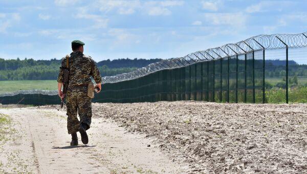 Украинский пограничник на участке российско-украинской границы. Архивное фото