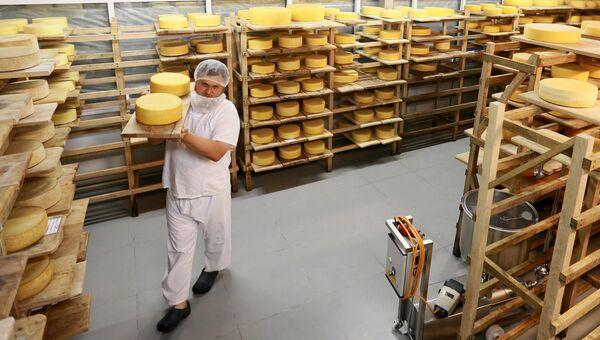 Производство сыра на ферме в Истринском районе Московской области. Архивное фото