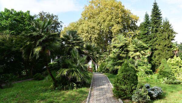 Ботанический сад. Архивное фото