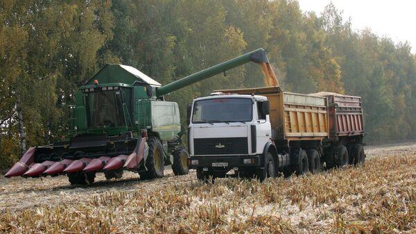 Уборка кукурузы на полях  Липецкой области