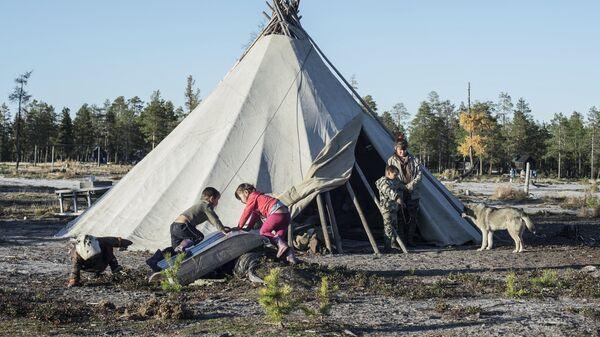 Стойбище родовой общины коренных малочисленных народов Севера Дянки-Кой в Ямало-Ненецком автономном округе