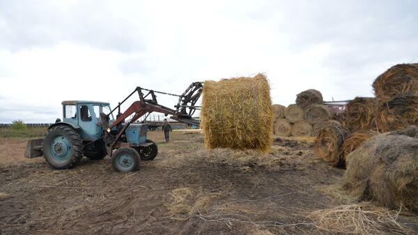 Уборка сена в селе Кидыш Челябинской области. Архивное фото