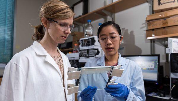 Химики изучают результаты эксперимента по самокопированию ДНК