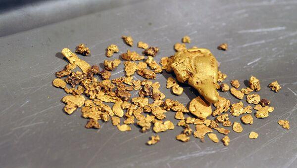 Россыпное золото. Архивное фото