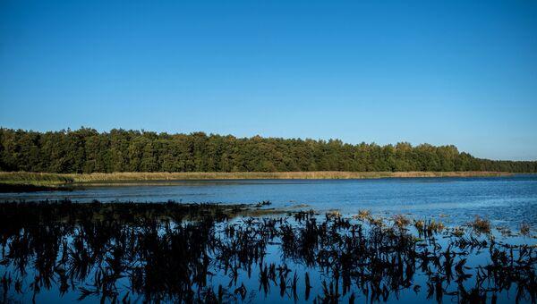 Озеро Чайка в национальном парке Куршская коса