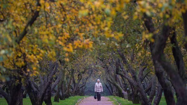 Женщина гуляет в парке Коломенское в Москве
