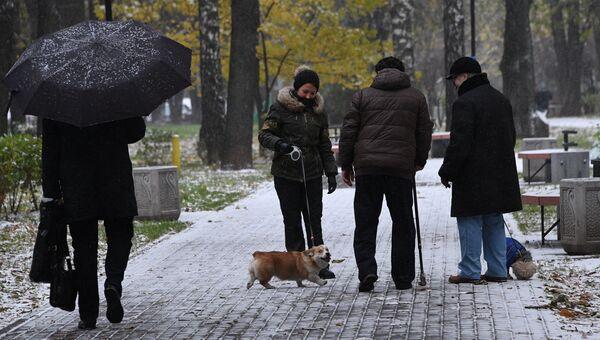 Люди выгуливают собак в одном из парков в Москве.Архивное фото