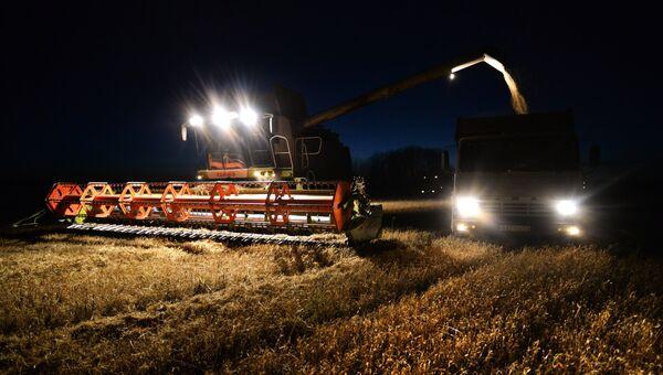 Уборка урожая зерновых в Новосибирской области. Архивное фото
