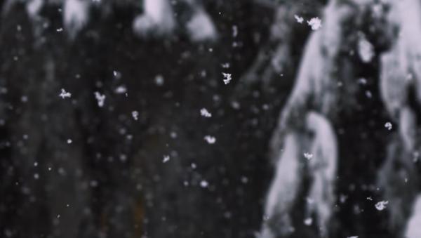 Лыжное безумие