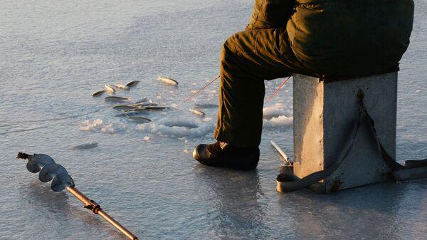 Рыбак-любитель