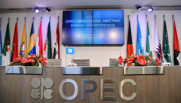 Перед началом официальной встречи Организации стран-экспортеров нефти (ОПЕК) в Вене. Архивное фото