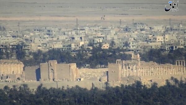 Вид исторической части Пальмиры в сирийской провинции Хомс. 11 декабря 2016