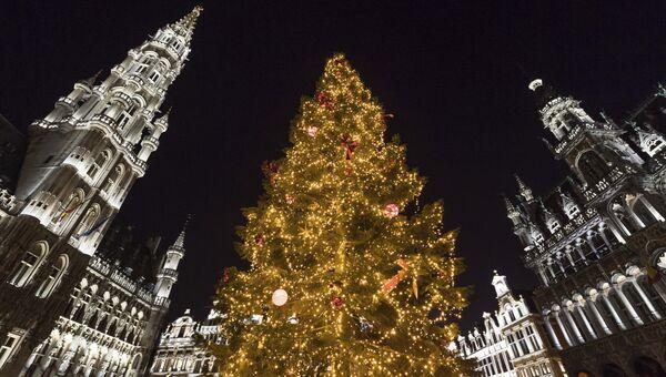 Рождественская елка на площади Гран-Плас в Брюсселе, Бельгия. Архивное фото