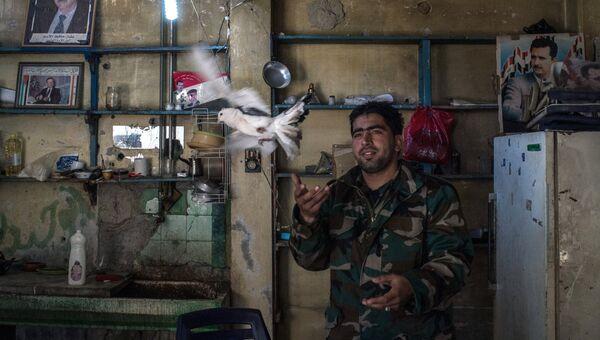 Военнослужащий Сирийской Арабской Армии на контрольно- пропускном пункте в разрушенном районе аль Хомса аль Хамидия. Сирия, 12.12.2015