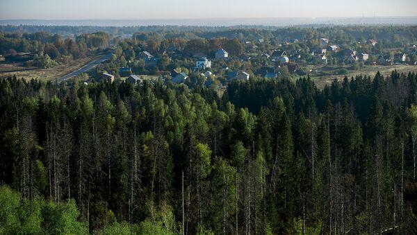 Зелёный щит защитит российские города. Архивное фото