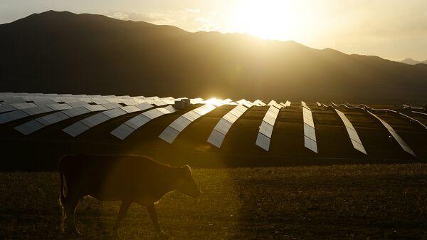 Перспективы зеленой экономики обсудят в рамках РИФ